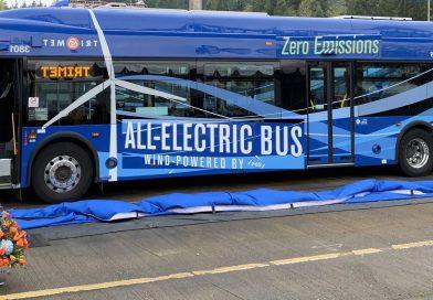 Snabb ökning av elbussar i stadstrafik