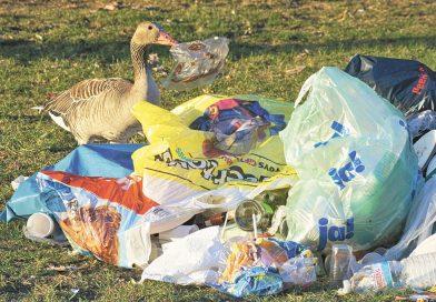 Europeisk plast dumpas i Asien